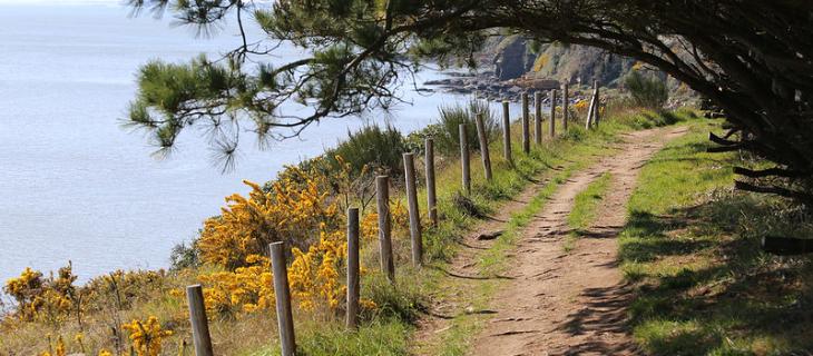 photographie d'un chemin côtier à Damgan